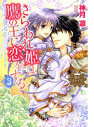 銀のセレイラ4 さらわれ姫は鷹の王に恋をする3(8)(NextF)