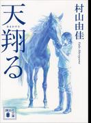 天翔る(講談社文庫)