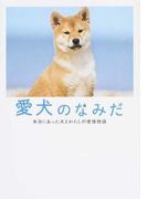 愛犬のなみだ 本当にあった犬とわたしの愛情物語 (リンダパブリッシャーズの本)