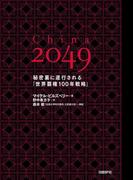 【期間限定価格】China 2049