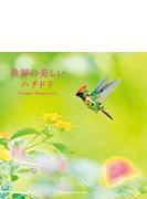 世界の美しいハチドリ