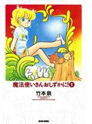 魔法使いさんおしずかに! 1(ビームコミックス)
