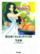 魔法使いさんおしずかに! 2(ビームコミックス)