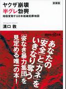 新装版 ヤクザ崩壊 半グレ勃興 地殻変動する日本組織犯罪地図(講談社+α文庫)