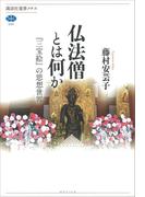 仏法僧とは何か 『三宝絵』の思想世界(講談社選書メチエ)