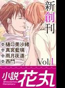 【全1-35セット】小説花丸(小説花丸)