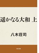 【全1-2セット】遥かなる大和(角川文庫)