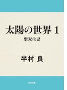 【全1-18セット】太陽の世界シリーズ(角川文庫)