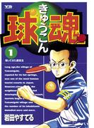 【全1-16セット】球魂(ヤングサンデーコミックス)
