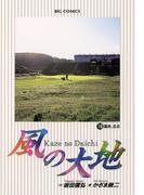 【16-20セット】風の大地(ビッグコミックス)