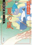 夏の嵐 手習処神田ごよみ(角川文庫)