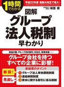 【期間限定価格】図解 グループ法人税制早わかり(中経出版)