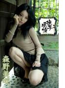 森野美咲 撫子風情【image.tvデジタル写真集】(デジタルブックファクトリー)