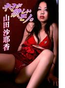 山田沙耶香 キミが欲しいモノ。【image.tvデジタル写真集】(デジタルブックファクトリー)