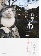 日本のねこみち
