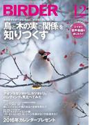 BIRDER2015年12月号