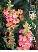 【期間限定価格】庭の色