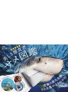 美しき捕食者サメ図鑑