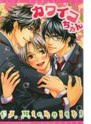 カワイコちゃん(4)(ディアプラス・コミックス)