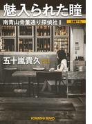 魅入られた瞳~南青山骨董通り探偵社II~(光文社文庫)