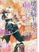 【1-5セット】壊滅騎士団と捕らわれの乙女(一迅社文庫アイリス)