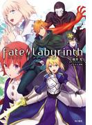 Fate/Labyrinth(単行本コミックス)
