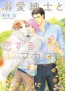 溺愛紳士と恋するマカロン(幻冬舎ルチル文庫)