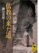 仏教の来た道(講談社学術文庫)