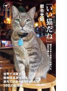 ヤマケイ新書 「いい猫だね」(ヤマケイ新書)