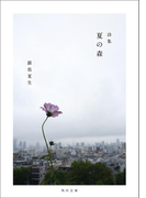 【写真詩集】夏の森(角川文庫)