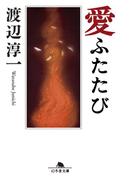 愛ふたたび(幻冬舎文庫)