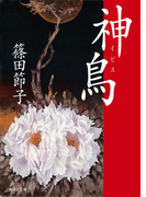 神鳥(イビス)(集英社文庫)