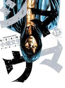 シマウマ(12)(YKコミックス)