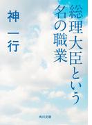 総理大臣という名の職業(角川文庫)