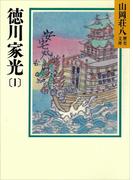 【全1-4セット】徳川家光(山岡荘八歴史文庫)