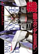 電撃データコレクション(18) 機動戦士ガンダムSEED 下巻(DENGEKI HOBBY BOOKS)