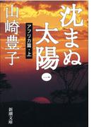 【全1-5セット】沈まぬ太陽