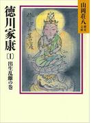 【全1-26セット】徳川家康(山岡荘八歴史文庫)