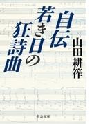 自伝 若き日の狂詩曲(中公文庫)