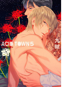 ACID TOWN(46)(ルチルコレクション)