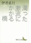 濁った激流にかかる橋(講談社文芸文庫)