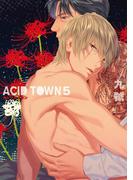 ACID TOWN(5)(ルチルコレクション)
