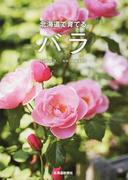 北海道で育てるバラ