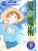 夏の魔術(下)