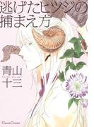 逃げたヒツジの捕まえ方(Canna Comics(カンナコミックス))