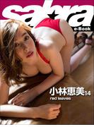 red leaves 小林恵美14 [sabra net e-Book](sabra net)