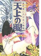 壺中堂二代目主人物語 天上の眼(バーズコミックス)