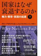 国家はなぜ衰退するのか 権力・繁栄・貧困の起源 下 (ハヤカワ文庫 NF)(ハヤカワ文庫 NF)