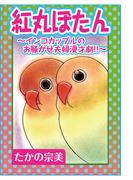 紅丸ぼたん~インコカップルのお騒がせ夫婦漫才劇!!~(ペット宣言)