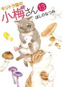 キジトラ猫の小梅さん(13)(ねこぱんちコミックス)